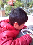 image/2010-01-11T19:37:401